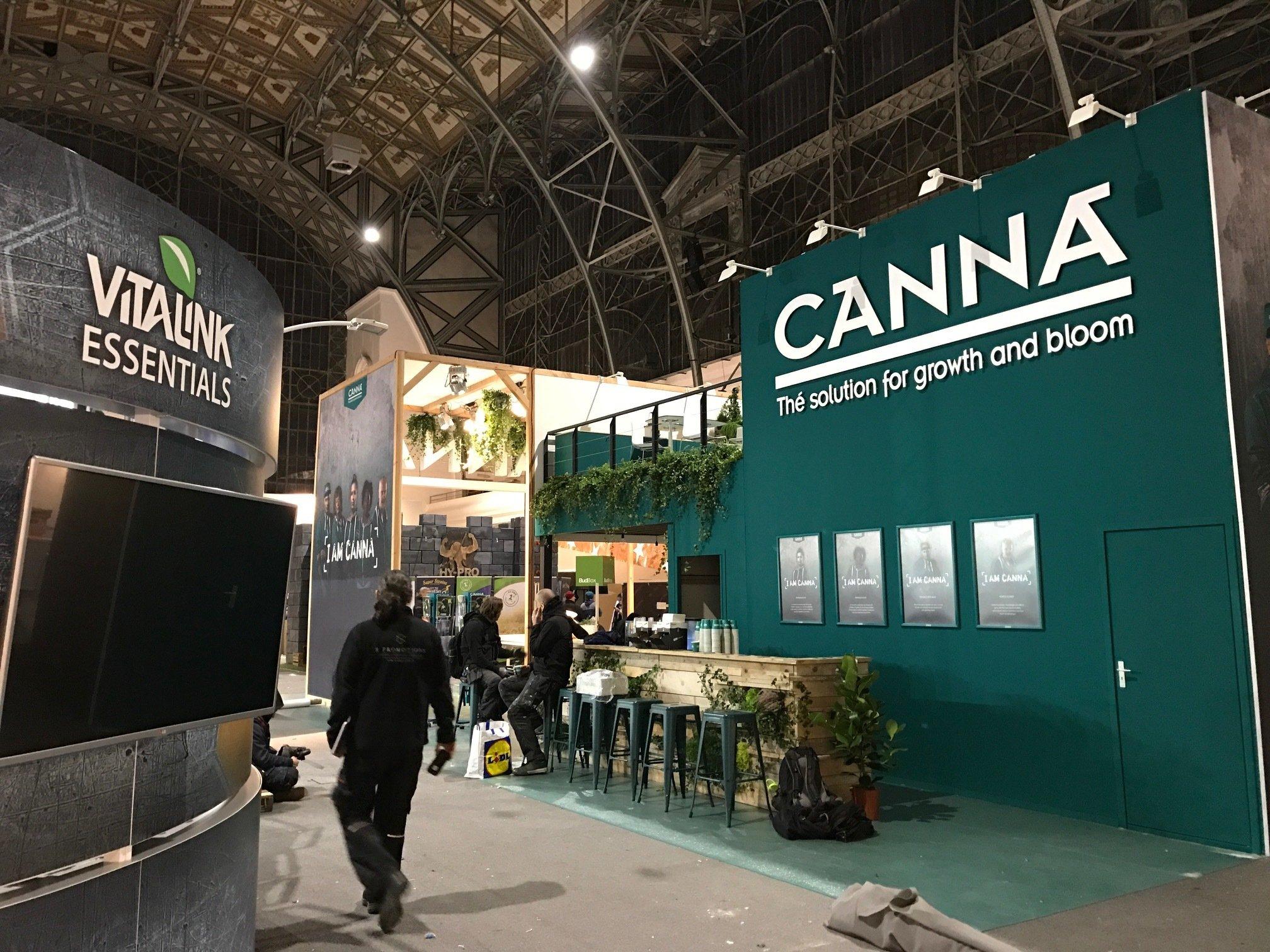 Шишкин лес семена конопляные марихуана самое интересное