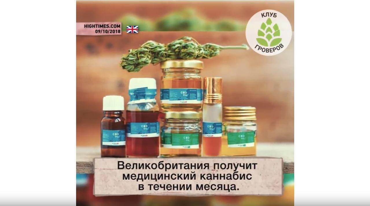 В течении месяца марихуана урбеч из конопляных семян купить в