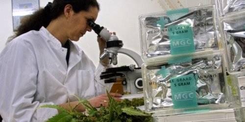 Что поможет вывести марихуану из организма конопля производные конопли
